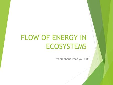 FLOW OF ENERGY IN ECOSYSTEMS Its all about what you eat!