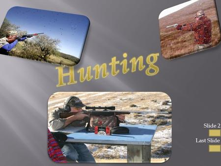Slide 2 Last Slide  Hunting is a sport where you take your rifle or shotgun and you shoot animals with your gun  Hunting is a way to get food aswell.