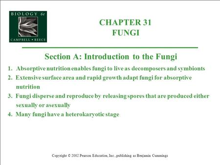 CHAPTER 31 FUNGI Copyright © 2002 Pearson Education, Inc., publishing as Benjamin Cummings Section A: Introduction to the Fungi 1.Absorptive nutrition.