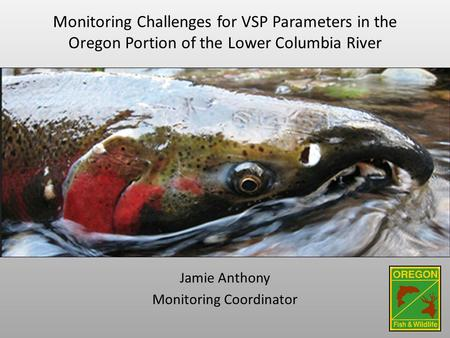 Monitoring Challenges for VSP Parameters in the Oregon Portion of the Lower Columbia River Jamie Anthony Monitoring Coordinator.