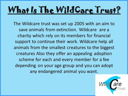 What Is The WildCare Trust? The Wildcare trust was set up 2005 with an aim to save animals from extinction. Wildcare are a charity which rely on its members.