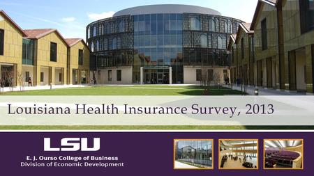 Louisiana Health Insurance Survey, 2013. Provides detailed data on Louisiana's uninsured population Assists in planning programs and targeting outreach.