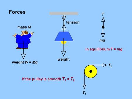 Forces mass M T2T2 T1T1 weight W = Mgweight tension mg T In equilibrium T = mg If the pulley is smooth T 1 = T 2.