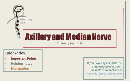 Axillary and Median Nerve Anatomy Team 434 Color Index: ▪Important Points ▪Helping notes ▪Explanation If you have any complaint or suggestion please don't.