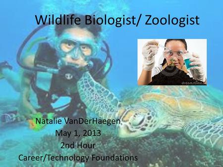 Wildlife Biologist/ Zoologist Natalie VanDerHaegen May 1, 2013 2nd Hour Career/Technology Foundations.
