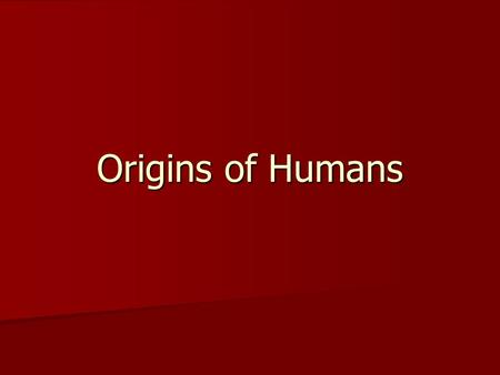 Origins of Humans. Prehistory Prehistory – putting the pieces of the past together for times when we have no written records.