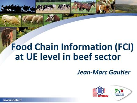 Www.idele.fr Food Chain Information (FCI) at UE level in beef sector Jean-Marc Gautier.