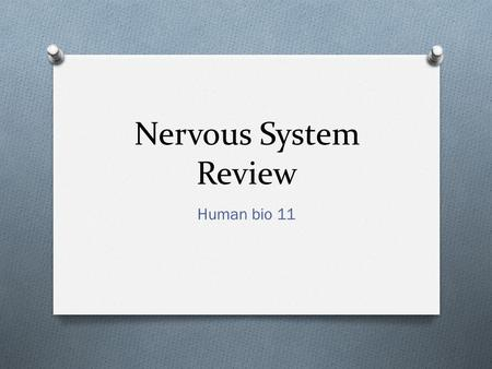 Nervous System Review Human bio 11. Parts of the Nervous System.