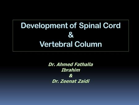 Development of Spinal Cord & Vertebral Column
