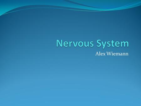 Alex Wiemann. Function of Nervous System Coordinates actions and transmits signals between parts of a body.
