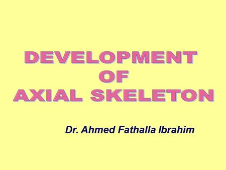 DEVELOPMENT OF AXIAL SKELETON Dr. Ahmed Fathalla Ibrahim.