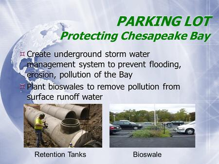 PARKING LOT Protecting Chesapeake Bay  Create underground storm water management system to prevent flooding, erosion, pollution of the Bay  Plant bioswales.