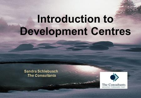 Introduction to Development Centres Sandra Schlebusch The Consultants.