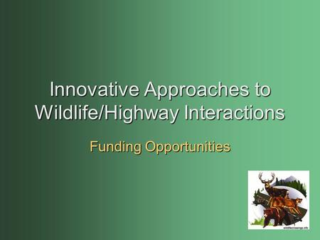 Innovative Approaches to Wildlife/Highway Interactions Funding Opportunities.