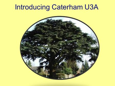 Introducing Caterham U3A. What is the U3A? The U3A is a learning organisation made up of independent groups … …whose members share educational, creative.