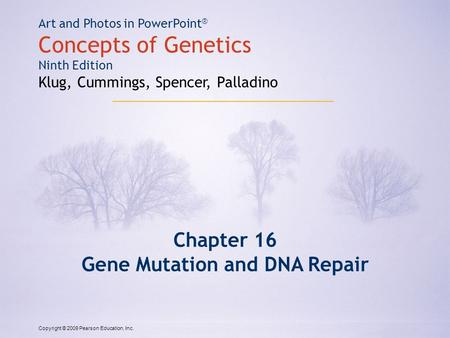 Copyright © 2009 Pearson Education, Inc. Art and Photos in PowerPoint ® Concepts of Genetics Ninth Edition Klug, Cummings, Spencer, Palladino Chapter 16.