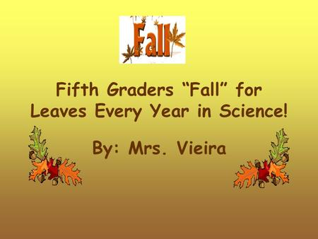 "Fifth Graders ""Fall"" for Leaves Every Year in Science! By: Mrs. Vieira."