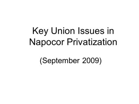 Key Union Issues in Napocor Privatization (September 2009)