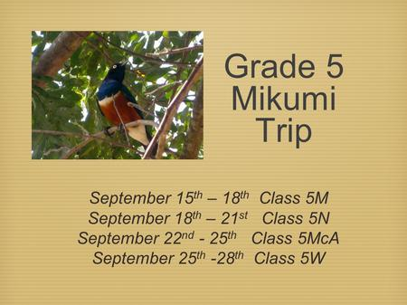 Grade 5 Mikumi Trip September 15 th – 18 th Class 5M September 18 th – 21 st Class 5N September 22 nd - 25 th Class 5McA September 25 th -28 th Class 5W.