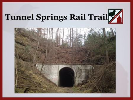 Tunnel Springs Rail Trail. Tunnel Springs Rail Trail is located in North Monroe County connecting Tunnel Springs to Beatrice, Alabama. The Trail is geographically.
