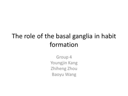 The role of the basal ganglia in habit formation Group 4 Youngjin Kang Zhiheng Zhou Baoyu Wang.
