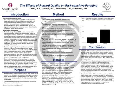 Introduction The Effects of Reward Quality on Risk-sensitive Foraging Craft*, B.B., Church, A.C., Rohrbach, C.M., & Bennett, J.M. All data were analyzed.