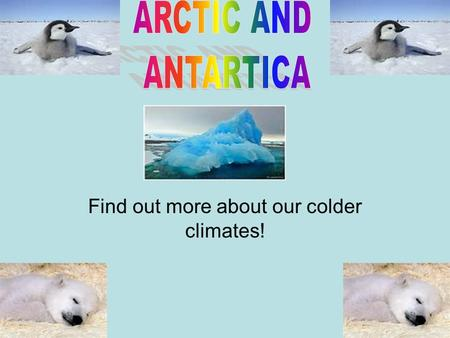 Find out more about our colder climates!. The Arctic is northernmost part of the earth, also the Arctic is home to the North pole. Did you know that Arctic.