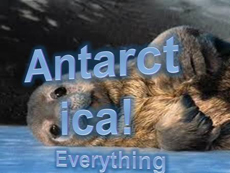 Where's Antarctica?  Antarctica is situated over the south pole.