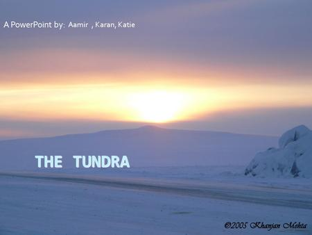 THE TUNDRA A PowerPoint by: Aamir, Karan, Katie The Tundra The Tundra is an icy, freezing biome that is mostly permafrost. It is the world's youngest.