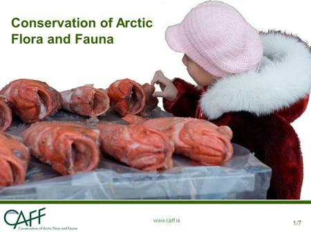 1/7 www.caff.is Conservation of Arctic Flora and Fauna.