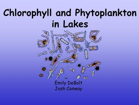 Chlorophyll and Phytoplankton in Lakes Emily DeBolt Josh Conway.