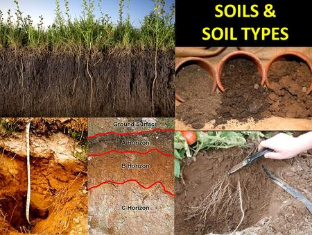 SOILS & SOIL TYPES. What is soil? Soil is one of the basic resources we need to survive – like air and water. the surface layer of the Earth that contains.