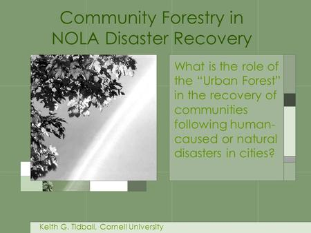 "What is the role of the ""Urban Forest"" in the recovery of communities following human- caused or natural disasters in cities? Community Forestry in NOLA."
