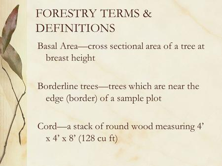 FORESTRY TERMS & DEFINITIONS Basal Area—cross sectional area of a tree at breast height Borderline trees—trees which are near the edge (border) of a sample.