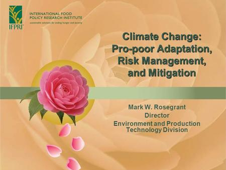 Climate Change: Pro-poor Adaptation, Risk Management, and Mitigation Mark W. Rosegrant Director Environment and Production Technology Division.