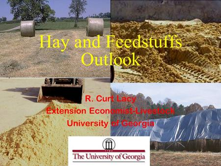 Hay and Feedstuffs Outlook R. Curt Lacy Extension Economist-Livestock University of Georgia.
