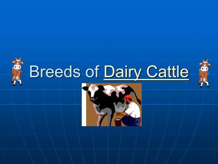 Breeds of Dairy Cattle Dairy CattleDairy Cattle. Focus What details can you tell me about a dairy cow? What details can you tell me about a dairy cow?