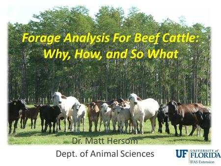 Forage Analysis For Beef Cattle: Why, How, and So What Dr. Matt Hersom Dept. of Animal Sciences.