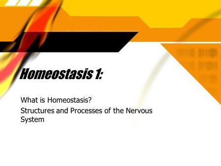 Homeostasis 1: What is Homeostasis? Structures and Processes of the Nervous System What is Homeostasis? Structures and Processes of the Nervous System.