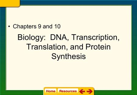 Biology: DNA, Transcription, Translation, and Protein Synthesis Chapters 9 and 10.