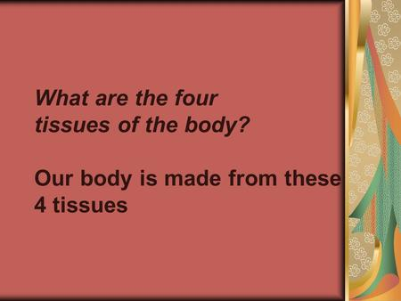 What are the four tissues of the body? Our body is made from these 4 tissues.