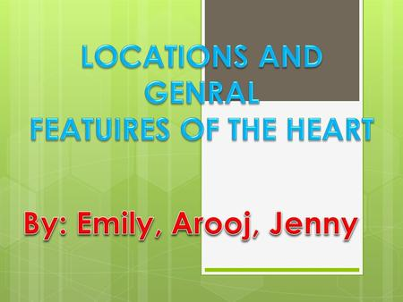 Right Atrium Left Atrium Right Ventricle Left Ventricle.