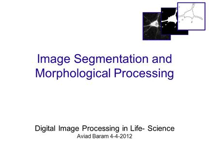 Image Segmentation and Morphological Processing Digital Image Processing in Life- Science Aviad Baram 4-4-2012.