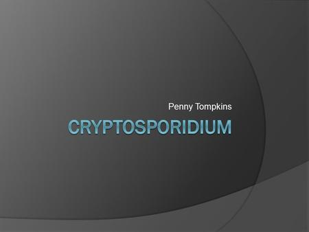 Penny Tompkins. Cryptosporidium  Cryptosporidium is a protozoan parasite in the phylum Apicomplexa  It causes a diarrheal illness called cryptosporidiosis.