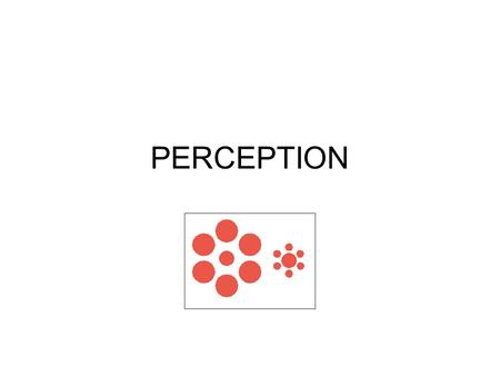 PERCEPTION. Why an issue? Sensory perception a key source of our beliefs about the world. Empiricism – senses the basis of knowledge.