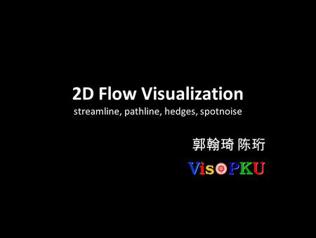 2D Flow Visualization streamline, pathline, hedges, spotnoise 郭翰琦 陈珩.