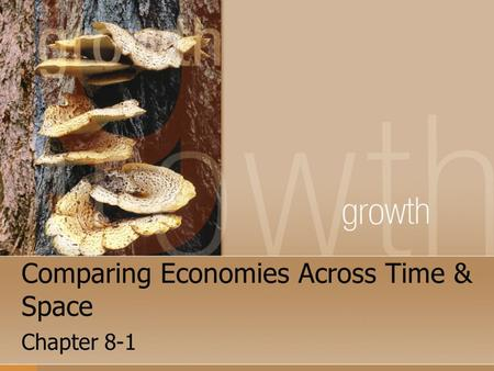 Comparing Economies Across Time & Space Chapter 8-1.