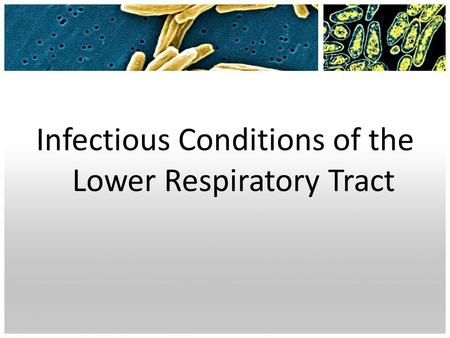 Infectious Conditions of the Lower Respiratory Tract.