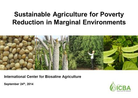 Sustainable Agriculture for Poverty Reduction in Marginal Environments International Center for Biosaline Agriculture September 24 th, 2014.