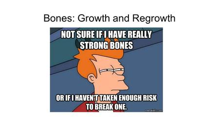 Bones: Growth and Regrowth. Bone Development The process of bone development is similar to the process of bone healing Specifically, one of the two types.